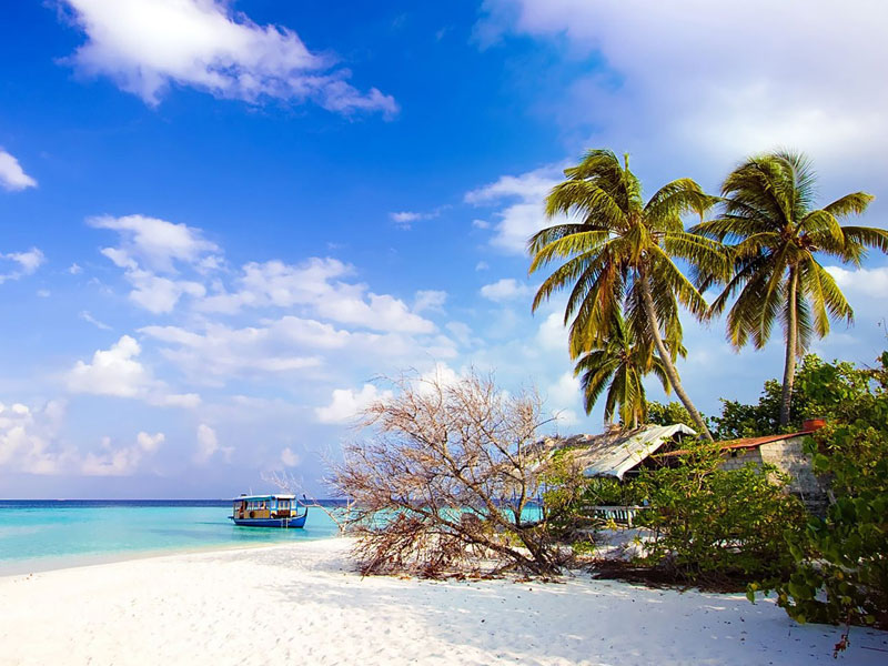 andaman tour package from coimbatore