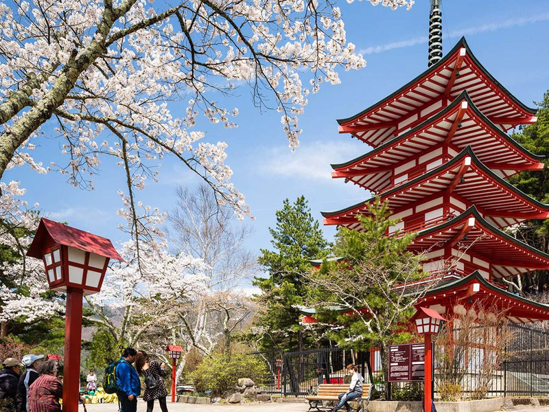 japan tour package in Coimbatore