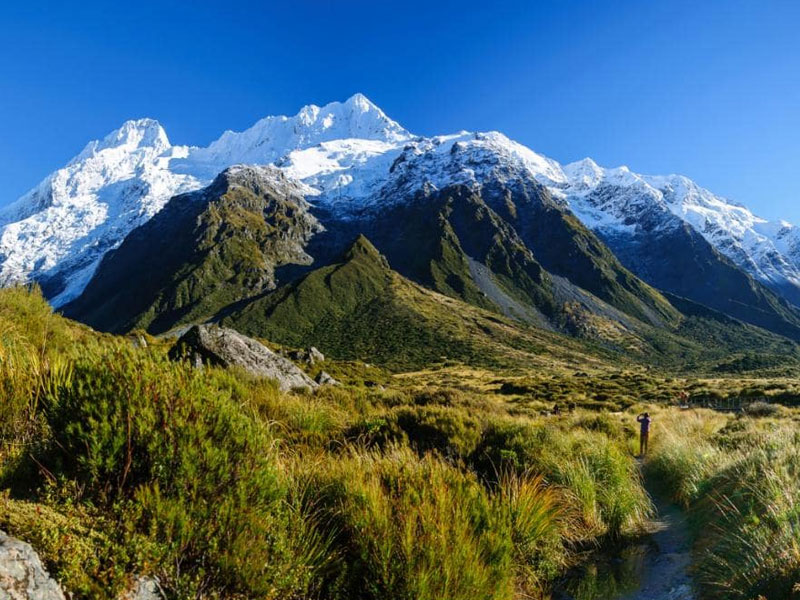 new zealand honeymoon tour package from coimbatore