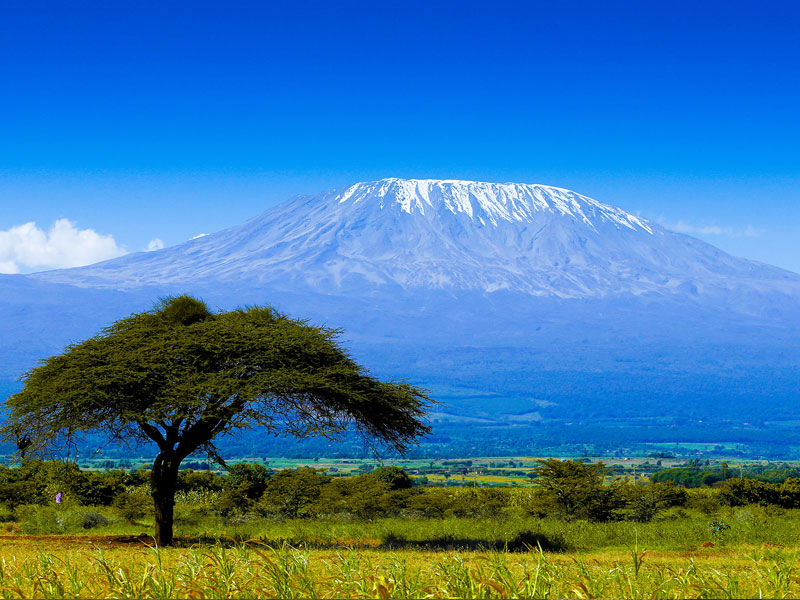 tanzania kilimanjaro tour packages coimbatore india.jpg